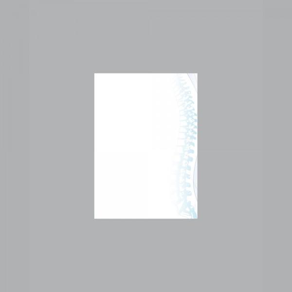 Zettel A6, Wirbelsäule