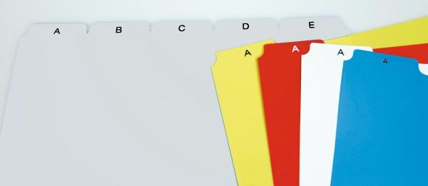 Registerkarten aus Kunststoff, grau