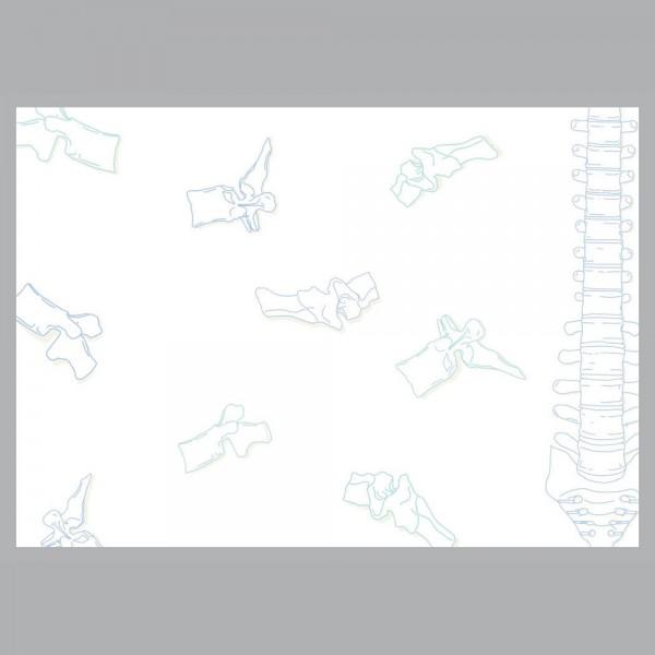 Flyer Spinal, A4 quer zum Falten, 100 g/m²